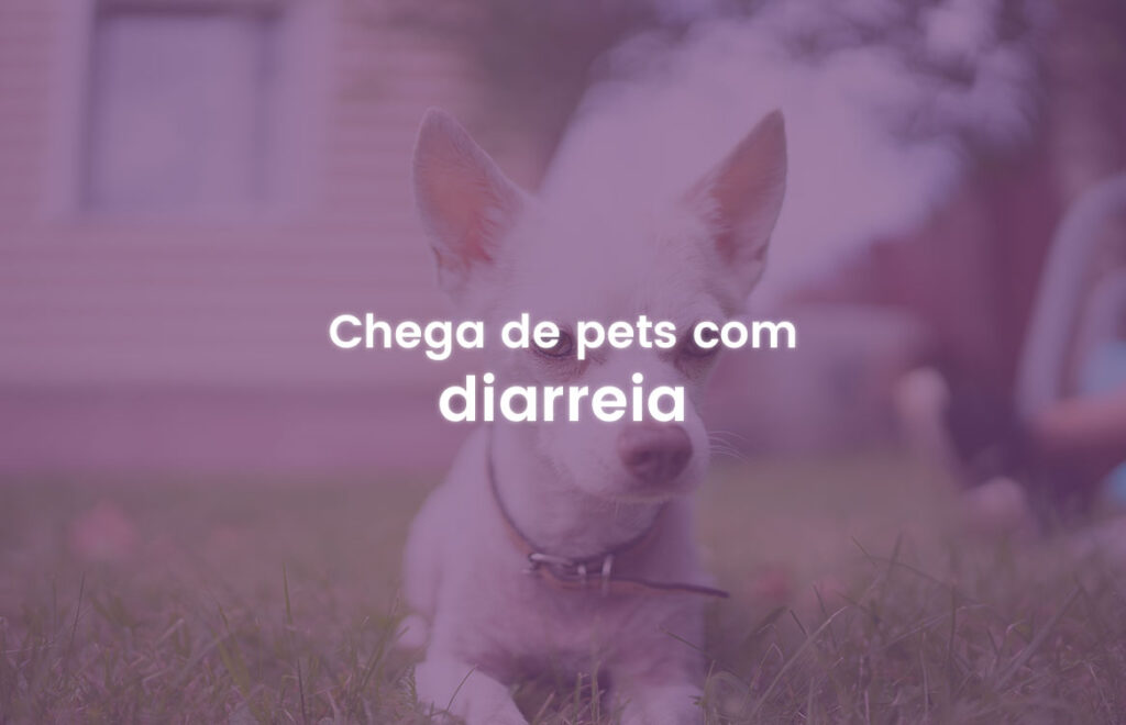 Pets com diarreia